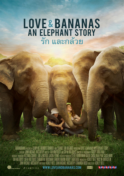3c6e646e7 Rent Love   Bananas  An Elephant Story (2018) on DVD and Blu-ray - DVD  Netflix