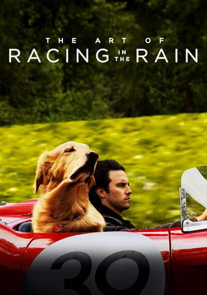 Rent The Art Of Racing In The Rain 2019 On Dvd And Blu Ray Dvd Netflix